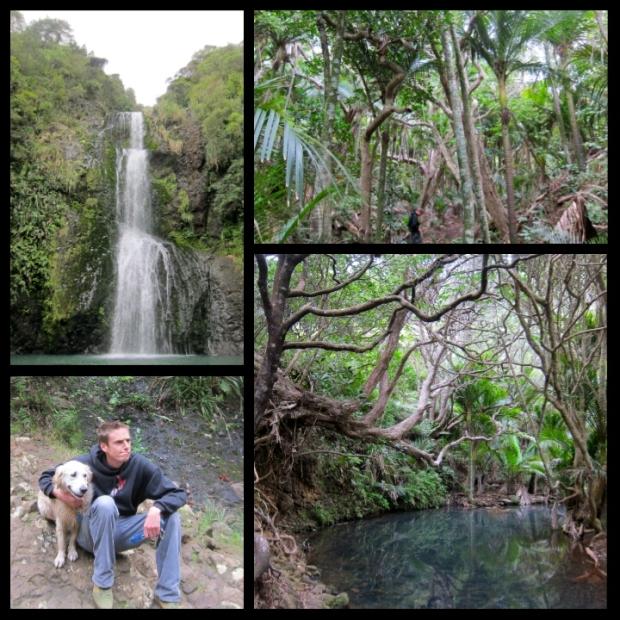 Piha_Falls